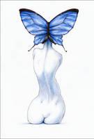 Lepidoptera by hypnothalamus
