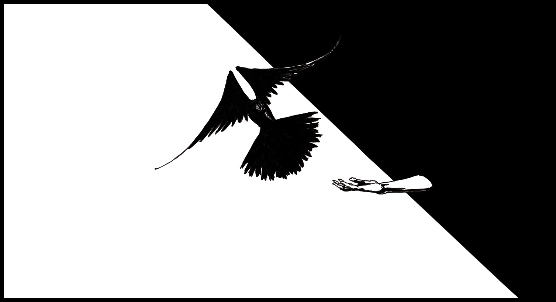 In the shadows by hypnothalamus