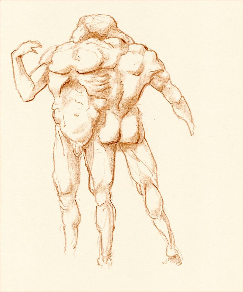 Time anatomy. Crossroads by hypnothalamus