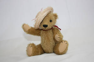 Teddy by tsb-stock