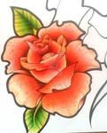 Oldschool Rose