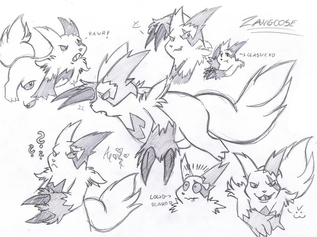Zangoose doodles by AR-ameth