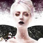 Bats of Winter