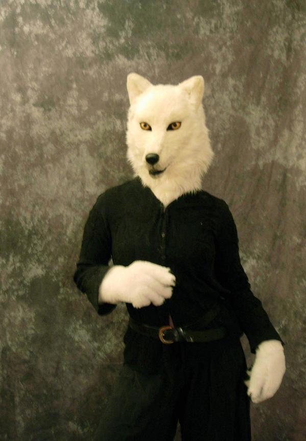 White Wolf by Qarrezel
