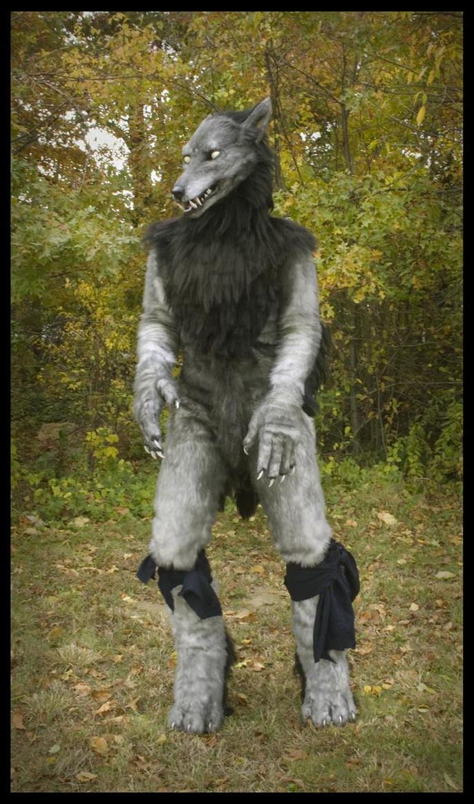 Where Wolf? by Qarrezel