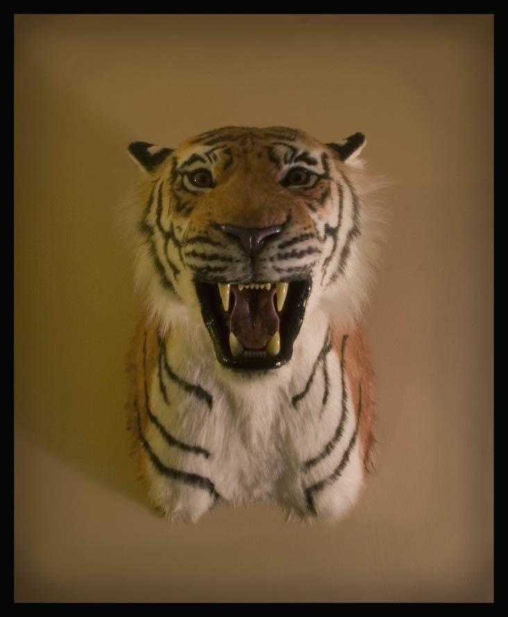 Fake Tiger Head Rug