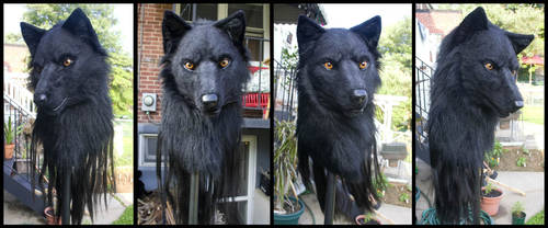 Black Wolf Mask 4-View