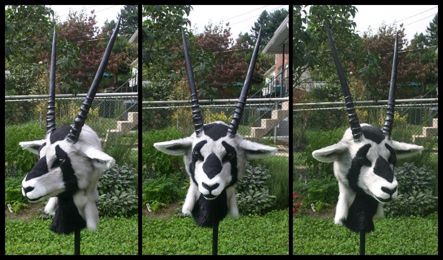 Oryx by Qarrezel