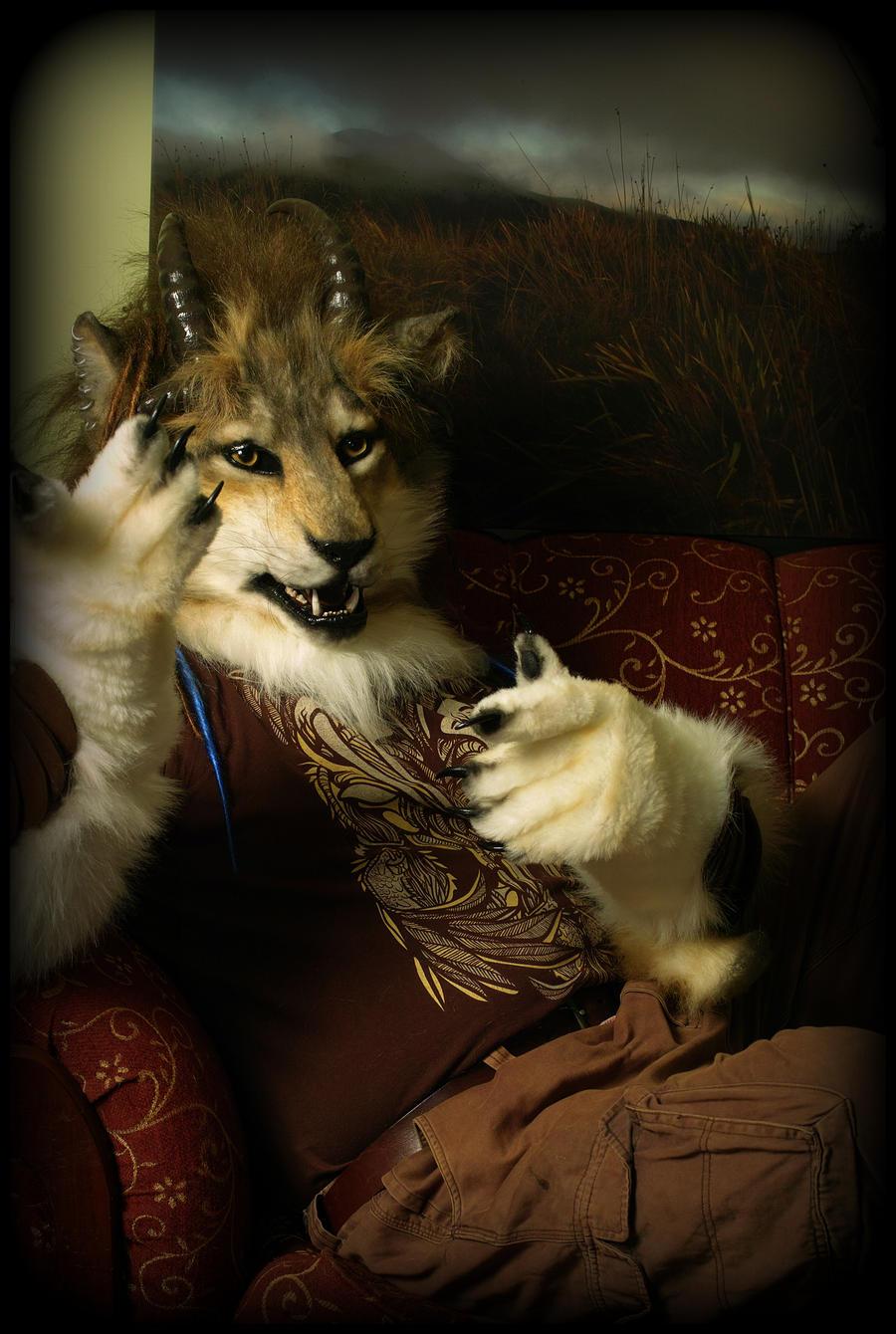Jawolf by Qarrezel