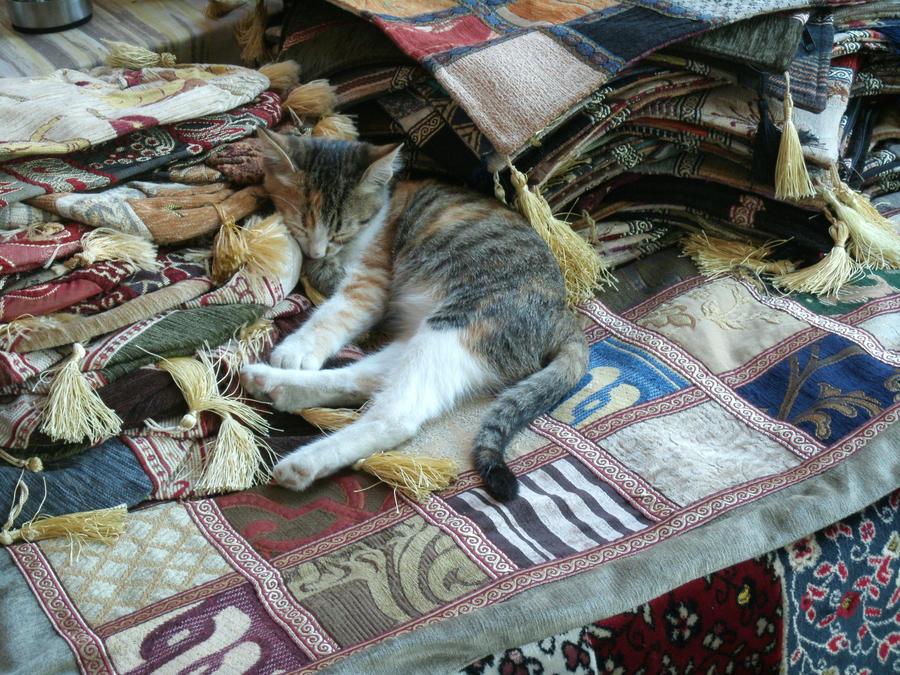 Sleeping by ummiehummie