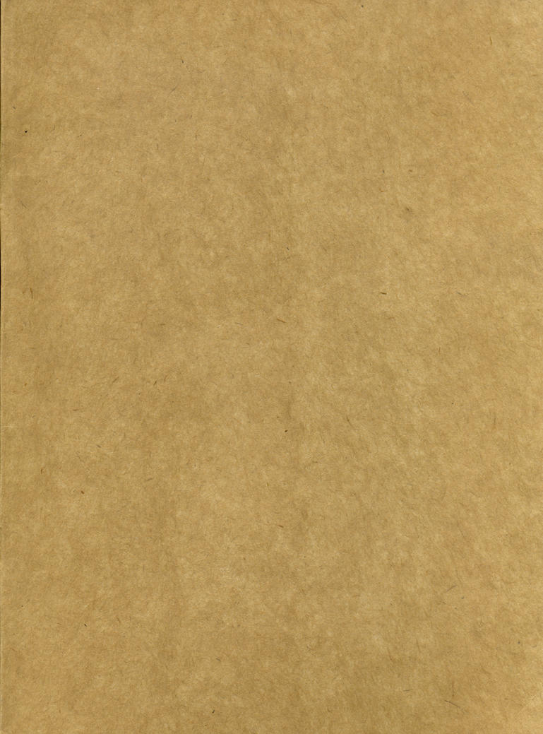 Recycled Paper Texture 01 by XiuLanStock
