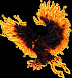 Fenix Volcanico