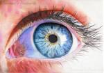 Oeil bleu/Blue eye