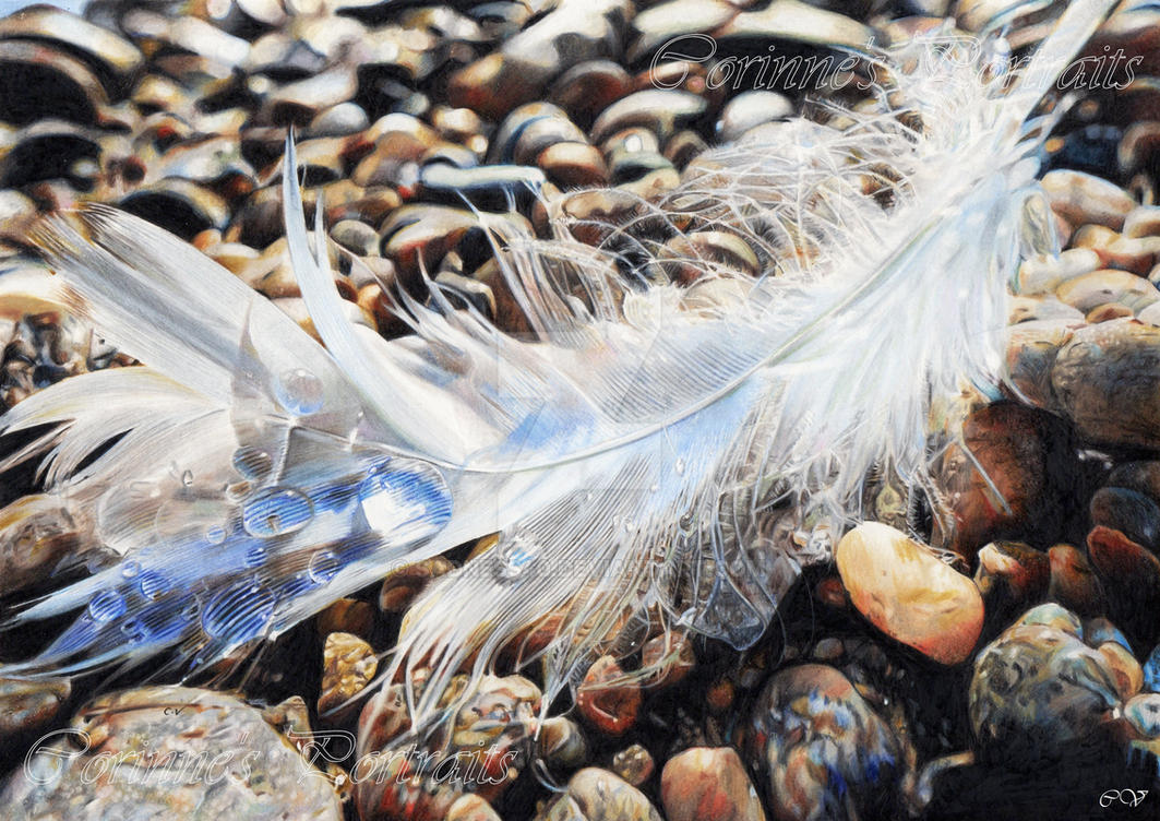 Plume/Feather