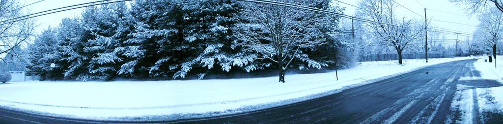 Snowy day IV by tidbitys619