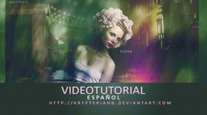 Videotutorial 3
