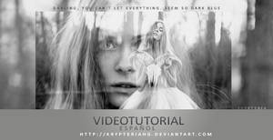 Videotutorial 6