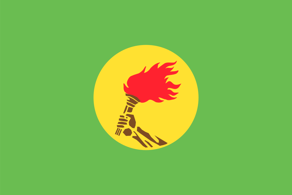 Change 2010 Style >> Flag of Zaire by LlwynogFox on DeviantArt