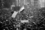 Egyptian Revolution 001