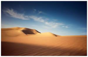 Desert Bliss by MahmoudYakut