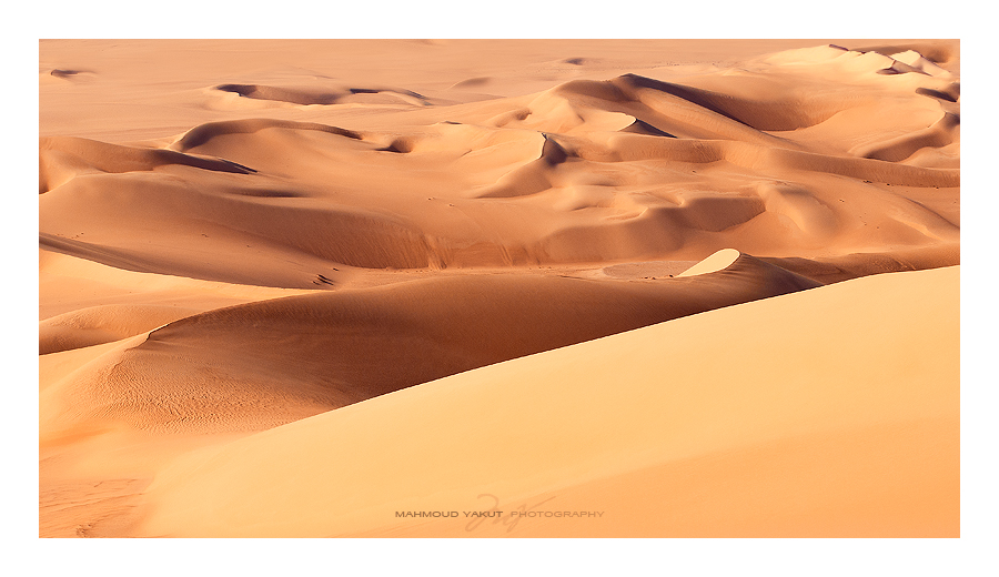 Dunes of Gold by MahmoudYakut
