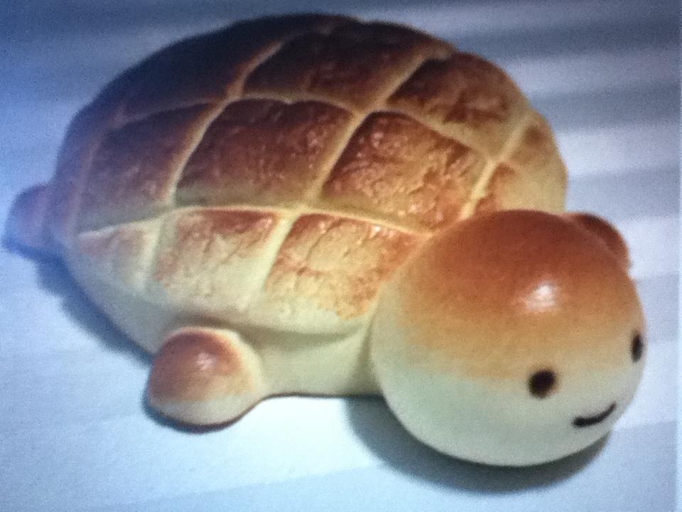 Turtle Bread Recipes — Dishmaps