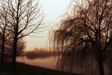 Mist by FeliCITY1995