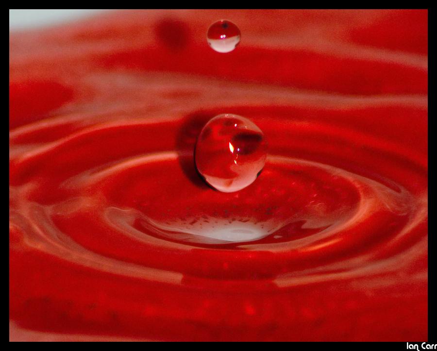 Double_Drop_by_Project_Ian_Carr.jpg