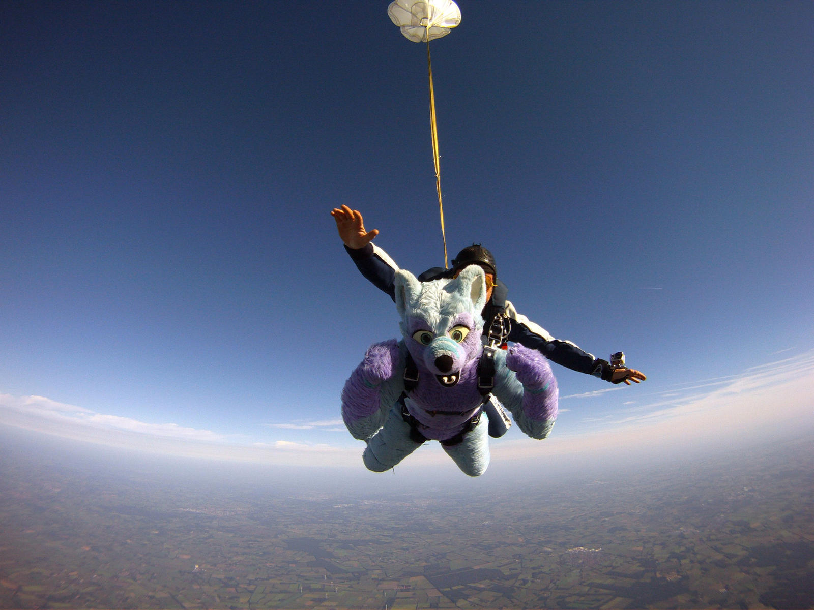 Keenora Fluffball - Fursuit Skydiving by Keenora