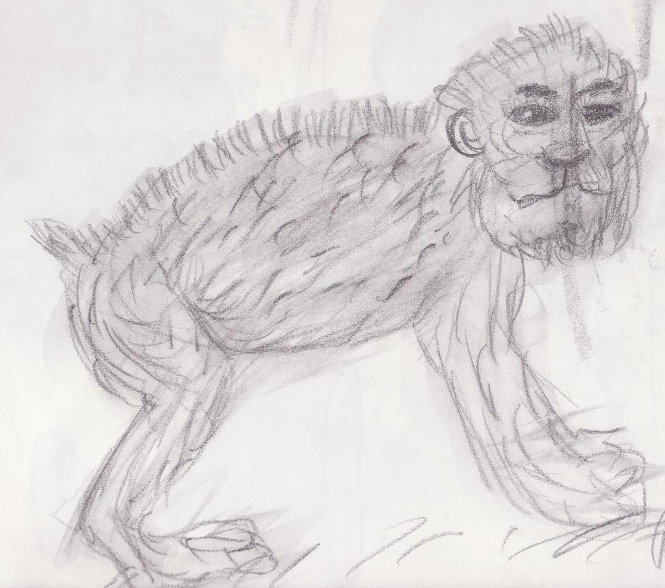 Monkey by sweetaj6