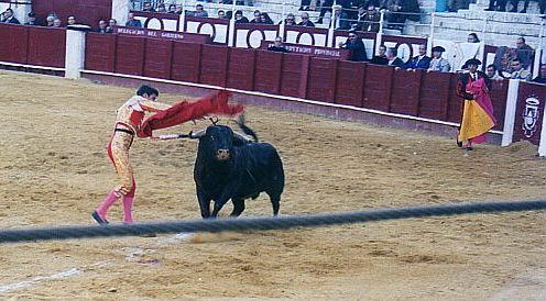 Bullfight by sweetaj6
