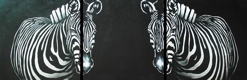 Two Zebras by SheldonChung