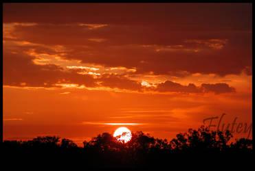 Sunset Winz by LonelyFlutey