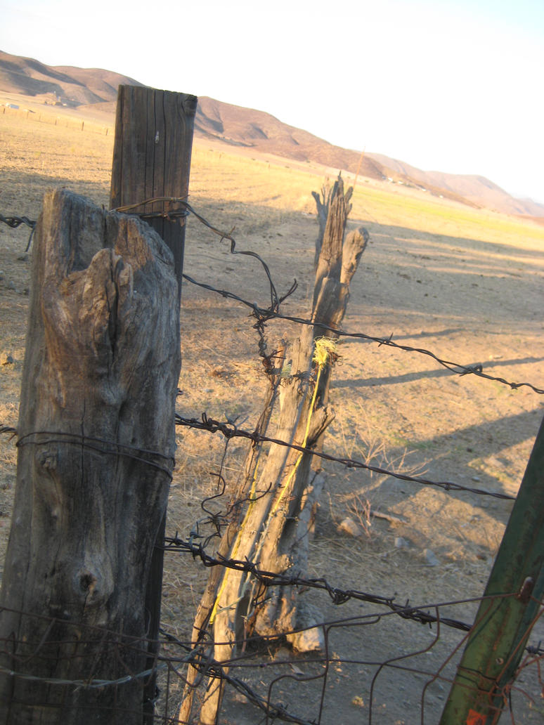 Old barbed wire fence by theycallmefave on deviantart