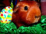 Easterpiggy
