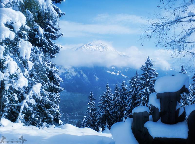 snowy 3 by Taorax