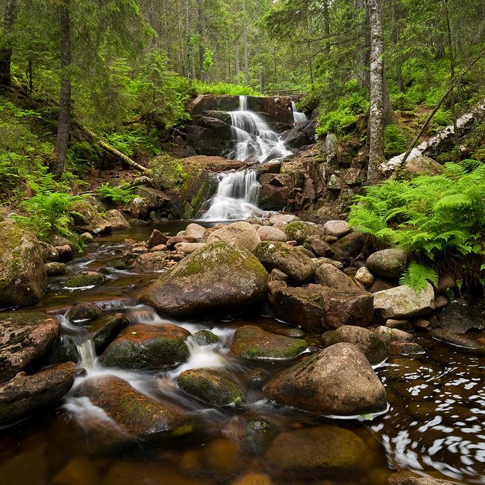 Skuleskogen by Gilgond