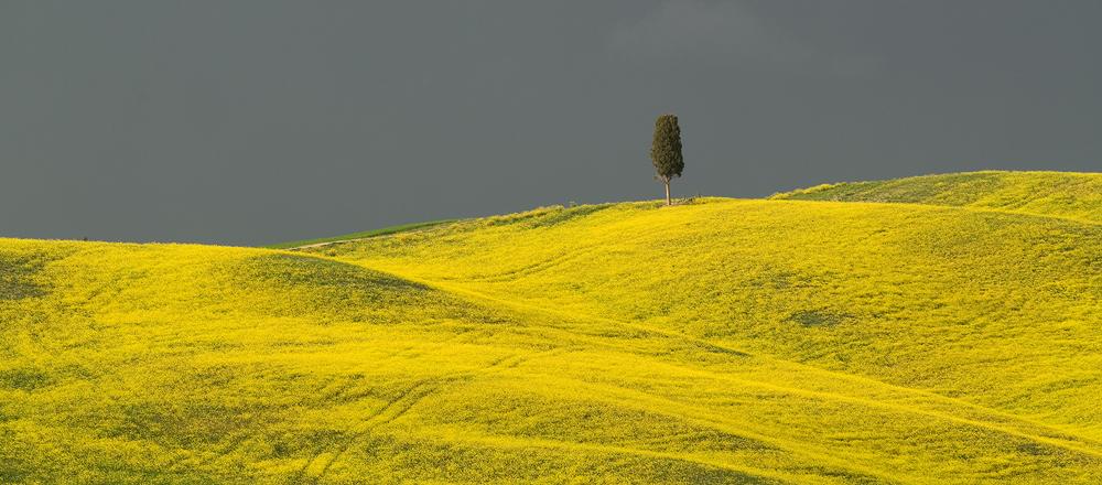 Tuscany IV by Gilgond