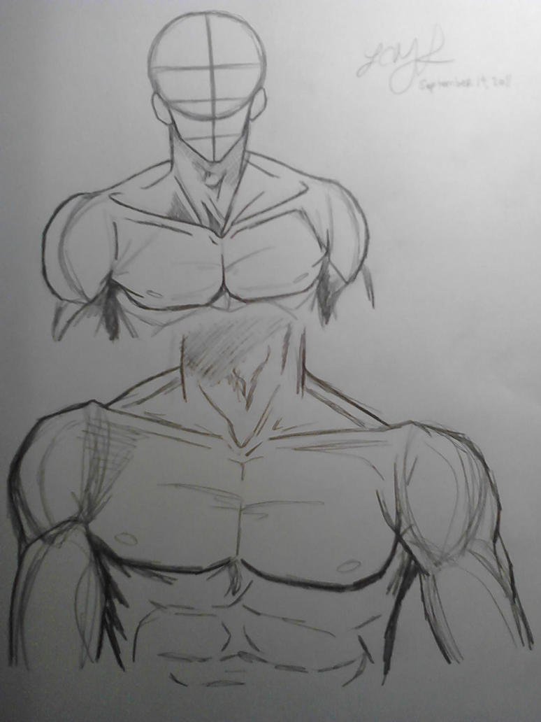 Upper Body Male Anatomy 2 by LCMorganTDA on DeviantArt