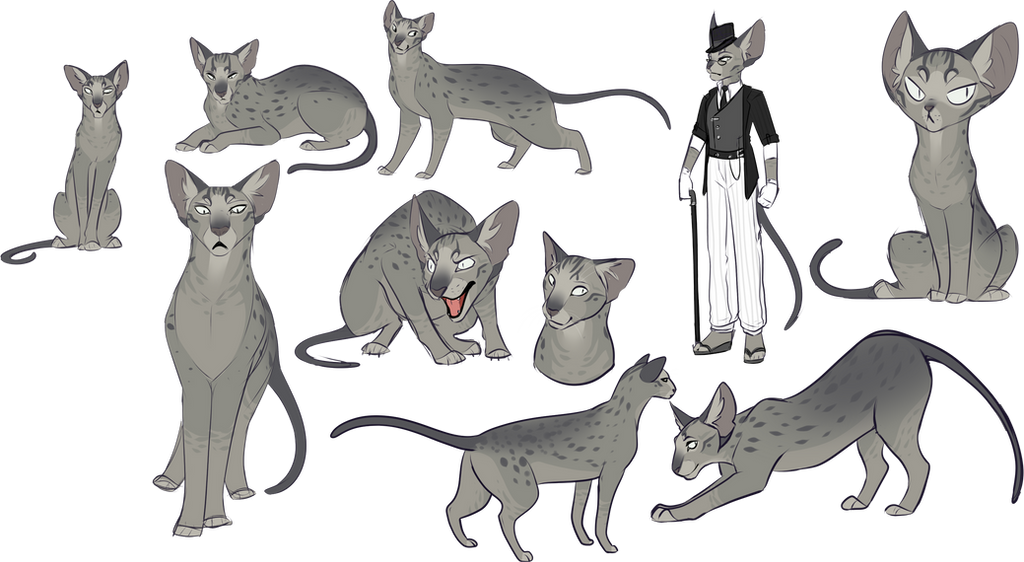 cat sketches dump by ocrystal on deviantart