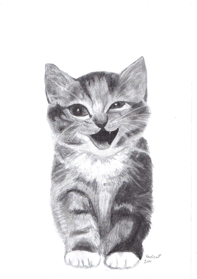 Uncategorized Drawing Of Kitten kitten 3 by owl is drawing on deviantart drawing