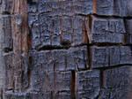 Blackened wood texture