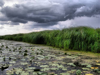 Pond HDR by AnnFrost-stock