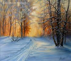 Winter, Forest, Sunset