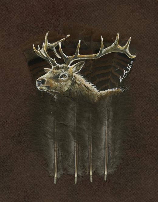 Elk Feather - Print
