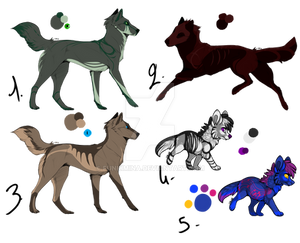 Set 4 : Canines Adopts [1/5]
