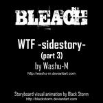 BLEACH: WTF -Sidestory 3 ani. by blackstorm