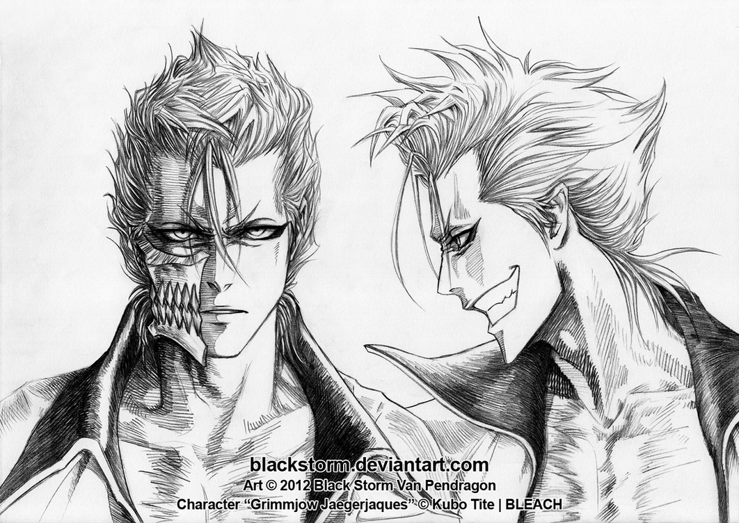 GRIMMJOW portraits front and profile by blackstorm