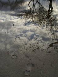 Mirror Waterhole by baltazor88