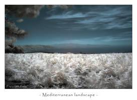 Mediterranean landscape by frescendine